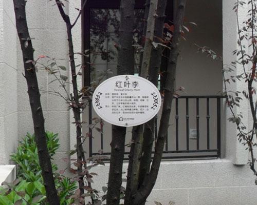 孝 义树铭牌